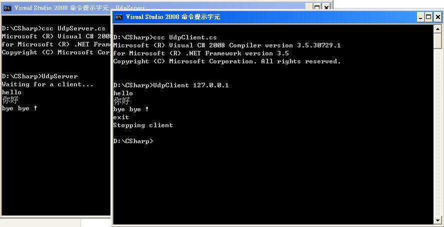 CSharpUdpScreen.jpg